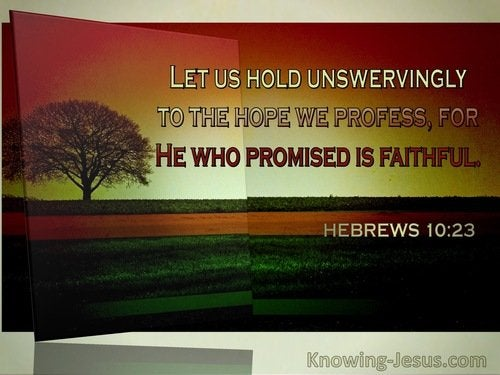 9 Bible verses about Steadfast In Hope