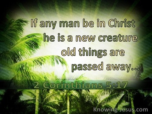 15 Bible verses about The New Creation