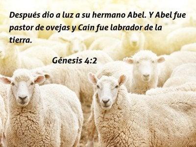 31 Versículos De La Biblia Sobre El Resentimiento Contra Las
