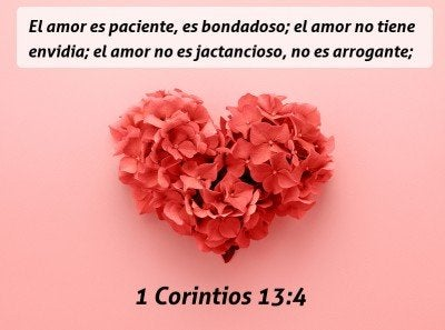 24 Versículos De La Biblia Sobre El Amor A Los Demás
